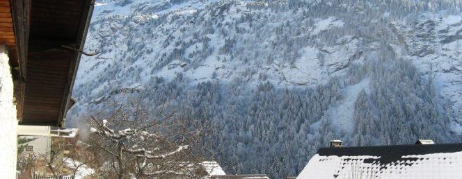 [Chalet Les Farfelus à Vaujany-Massif des Grandes Rousses/Alpe d'Huez]